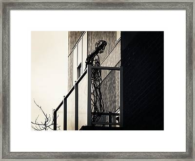 Your Own Cage Framed Print by Zinvolle Art