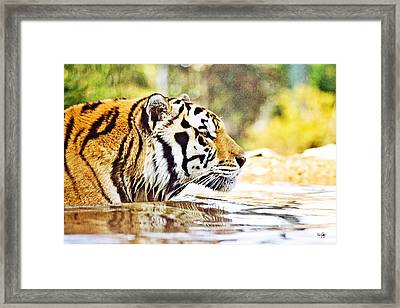 You're Mine Framed Print by Scott Pellegrin