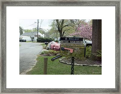 You've Got Male Framed Print by Brian Wallace