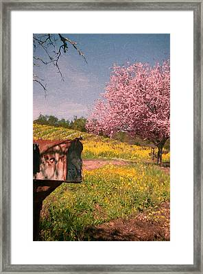 You've Got Spring Framed Print