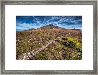 Yr Eifl Trail Framed Print by Adrian Evans