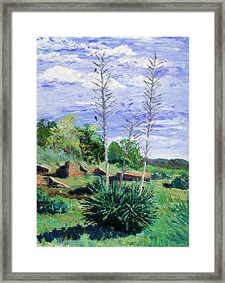 Yucca At The Ruins Framed Print by Timithy L Gordon