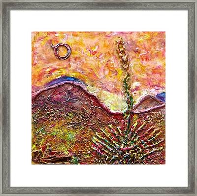 Yucca Cactus At Sunset Framed Print by Joe Bourne