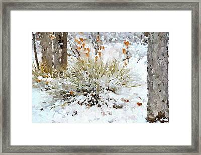 Yucca In The Snow Framed Print by John Cullum