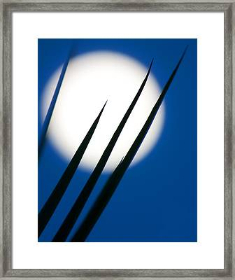 Framed Print featuring the photograph Yucca Moon by Jim Garrison