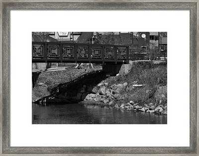 Z Bridge Framed Print