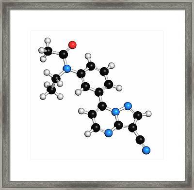 Zaleplon Hypnotic Drug Molecule Framed Print by Molekuul