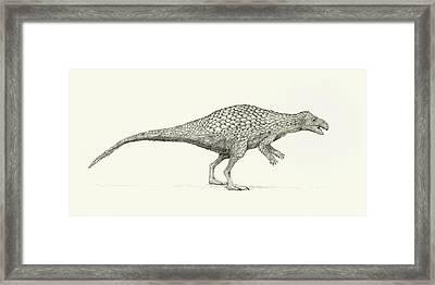 Zalmoxes Dinosaur Framed Print by Nemo Ramjet