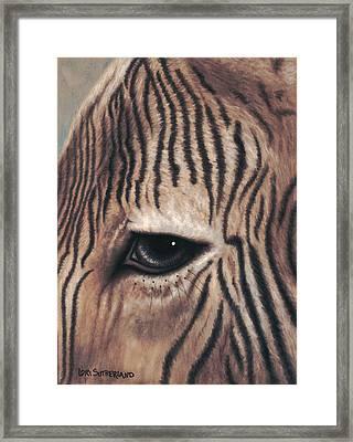 Zane Framed Print