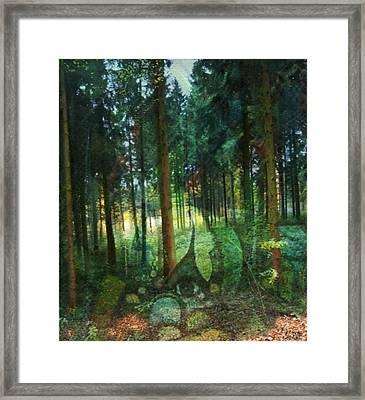 Zauberwald Framed Print by Gertrude Scheffler