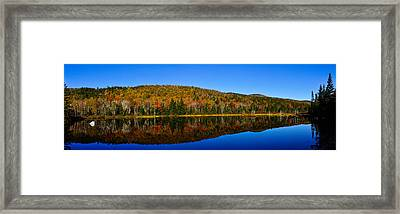 Zealand Pond Reflections Framed Print by Rockybranch Dreams