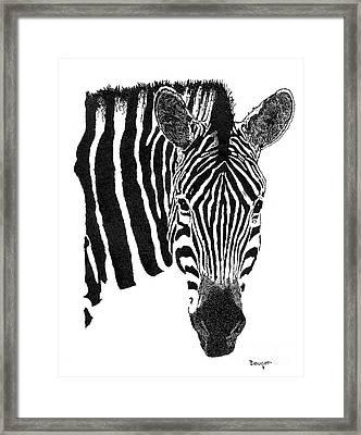 Zebra 1 Framed Print