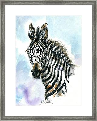 Zebra 1 Framed Print by Mary Armstrong