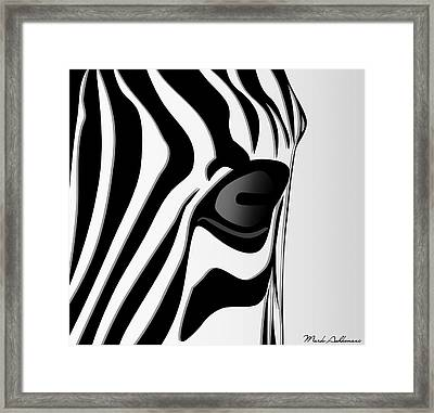 Zebra 3 Framed Print by Mark Ashkenazi