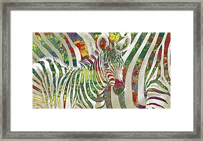 Zebra Art - 3 Stylised Drawing Art Poster Framed Print by Kim Wang