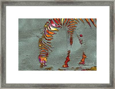 Zebra Art - 64spc Framed Print by Variance Collections