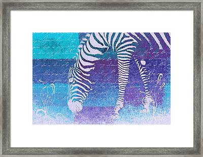 Zebra Art - Bp02t01 Framed Print
