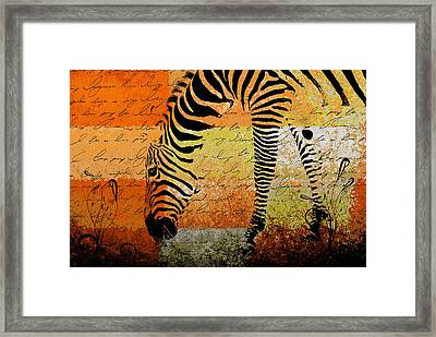 Zebra Art - Rng02t01 Framed Print by Variance Collections