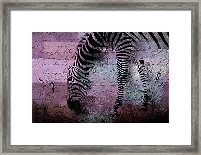 Zebra Art - Sc01 Framed Print