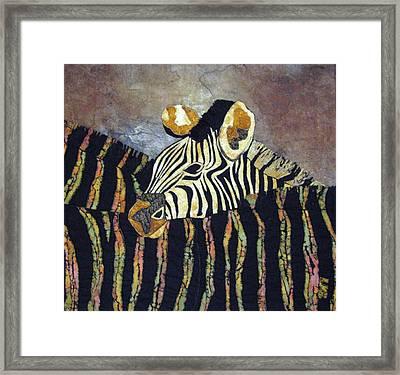 Zebra Baby Framed Print