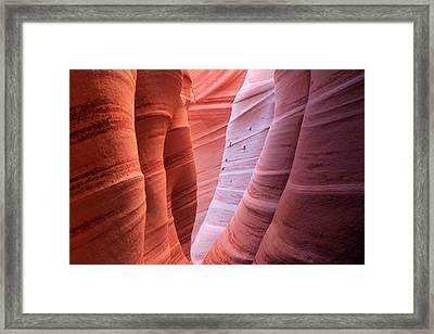 Zebra Canyon Framed Print by Johnny Adolphson