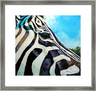 Zebra Eye Framed Print by Tracy Rose Moyers