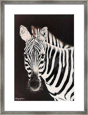 Framed Print featuring the painting Zebra Facing Left by DiDi Higginbotham