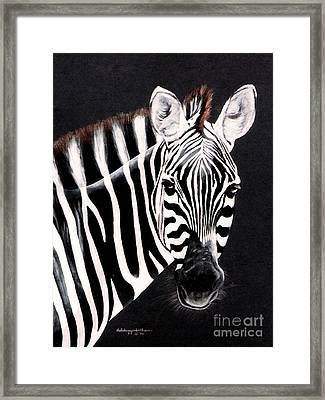 Framed Print featuring the painting Zebra Facing Right by DiDi Higginbotham