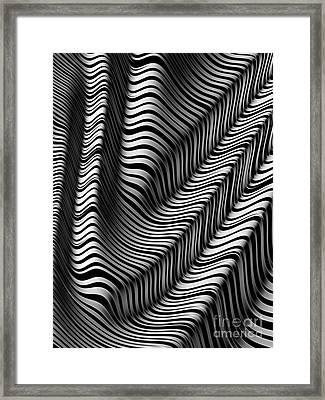 Zebra Folds Framed Print