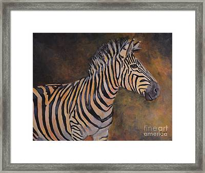 Zebra Framed Print by Jana Baker