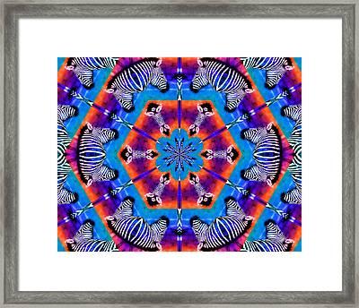 Zebra Kaleidoscope Framed Print