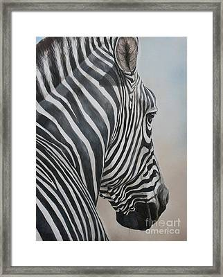 Zebra Look Framed Print by Charlotte Yealey