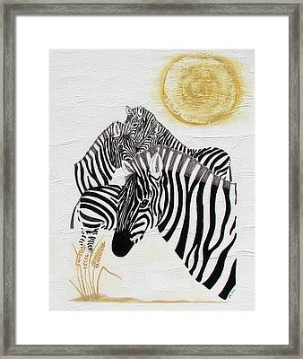 Zebra Quintet Framed Print by Stephanie Grant