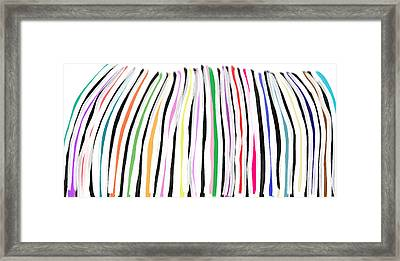 Zebra Rainbow Framed Print by S A Rivera