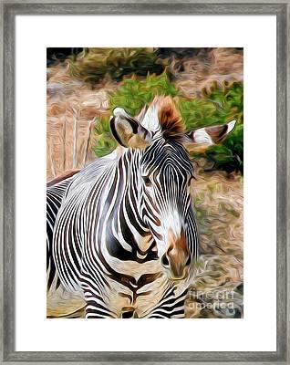 Zebra Rendition I Framed Print