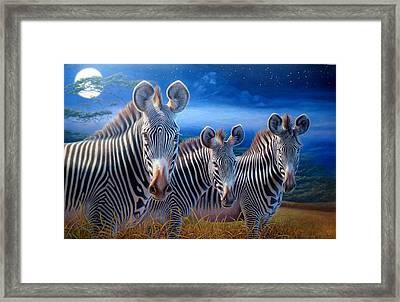 Zebras Framed Print by Hans Droog