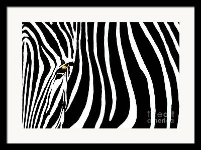 White Art Framed Prints