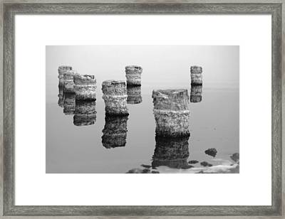 Zed Black And White Framed Print
