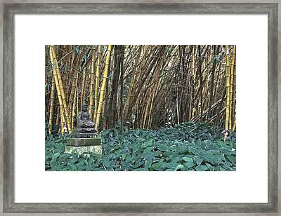 Zen Bamboo Framed Print