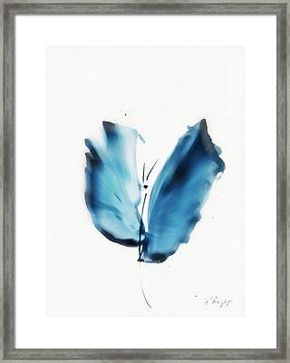 Zen Butterfly Framed Print by Frank Bright