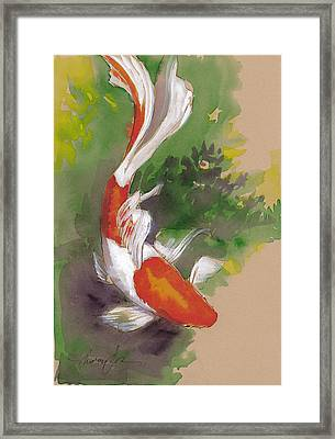 Zen Comet Goldfish Framed Print by Tracie Thompson