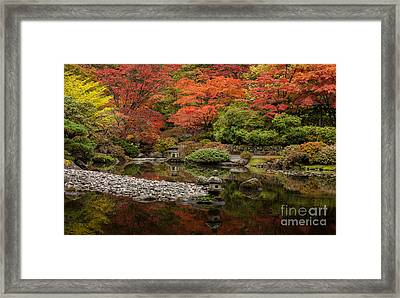 Zen Foliage Colors Framed Print by Mike Reid