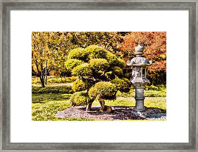 Framed Print featuring the photograph Zen Garden by Anthony Citro