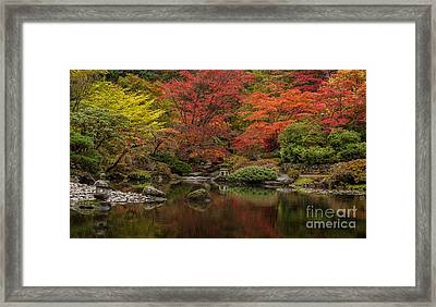 Zen Garden Reflected Framed Print by Mike Reid