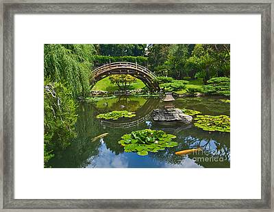 Zen - Japanese Garden With Moon Bridge And Lotus Pond With Koi Fish. Framed Print