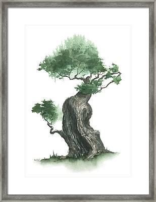 Zen Tree 1000 Framed Print by Sean Seal