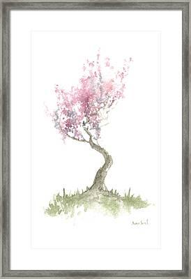Zen Tree In Spring Framed Print by Sean Seal