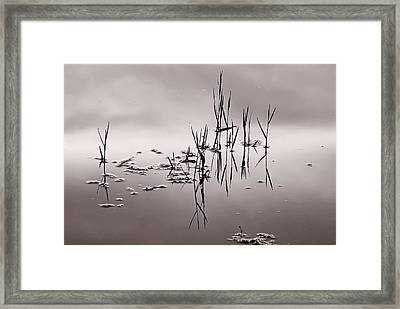 Framed Print featuring the photograph Zen Waters by Lorenzo Cassina