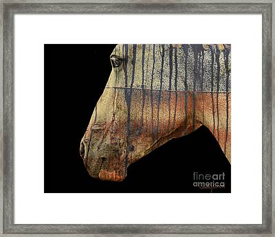 Zeniah Variation 1 Framed Print by Judy Wood