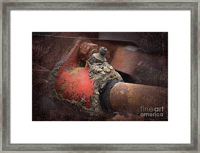 Zerk Framed Print by The Stone Age